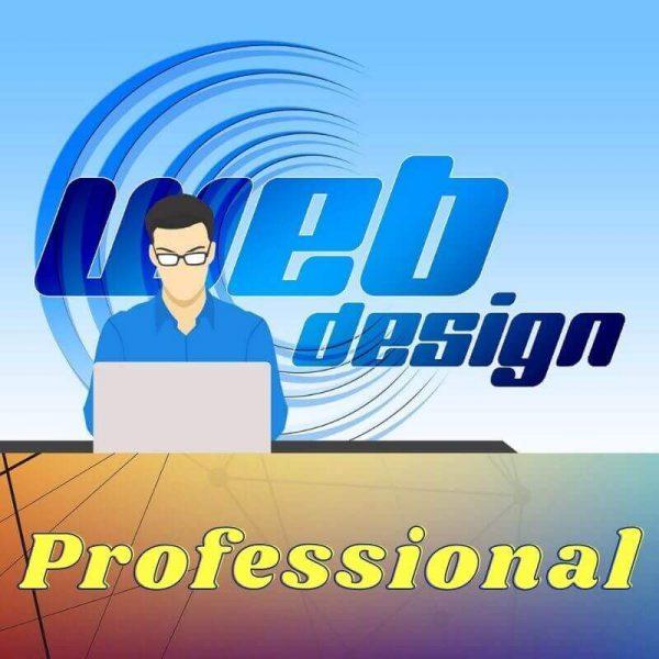 WebDesign-stylish-2021 professional website design company